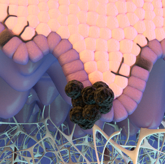 Cancer Immunotherapy Educational Animation
