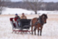 2020.02.15 sleigh ride (146).JPG