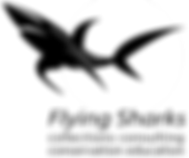 logo_sharks.png