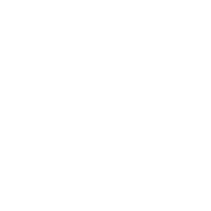 White No Text Odyssey Logo PNG.png