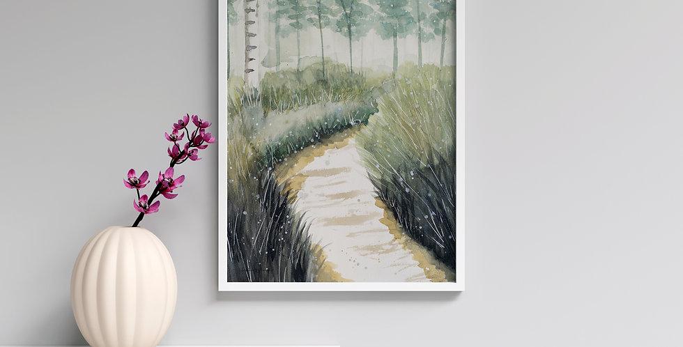 Birch Forest - Watercolour