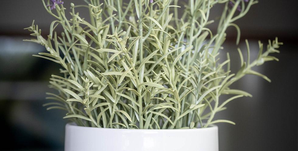 Ceramic  Planter Pot - Unite
