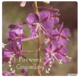 Fireweed Counselling.png