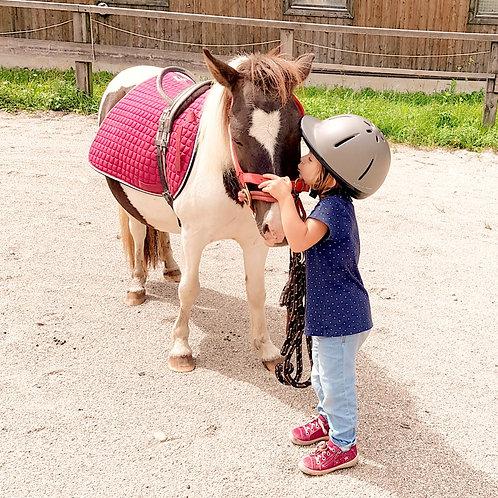 Ponyzeit