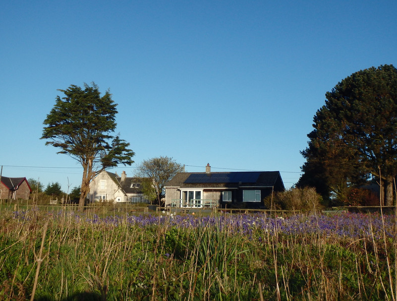 Tigh Na Ceol from the beach with bluebells in full bloom.