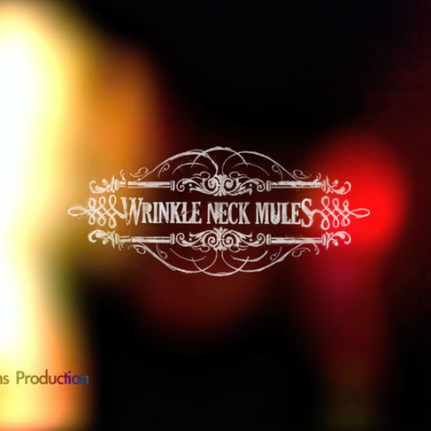 Wrinkle Neck Mules