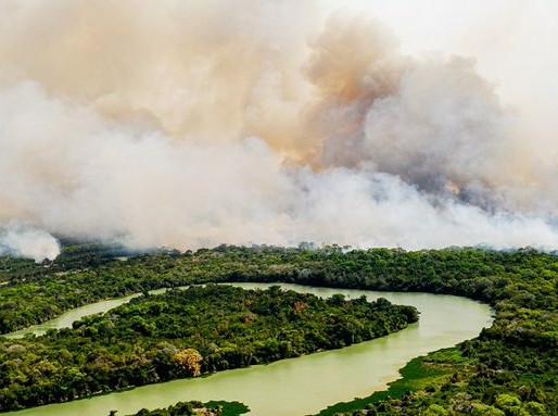 Como conquistas ambientais do Brasil estão ruindo sob Bolsonaro