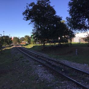 Prefeitura aproveita projeto da Nova Ferroeste para pedir retirada do trem de Curitiba