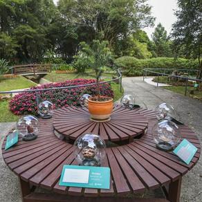 Jardim Botânico reabre Jardim das Sensações no aniversário de 30 anos