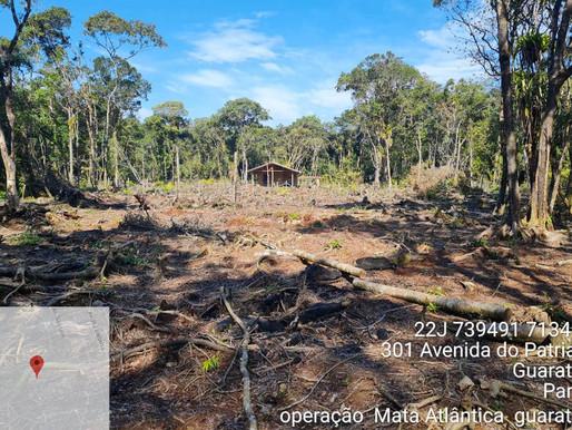 IAT identifica mais de 110 hectares de desmatamento ilegal no Litoral