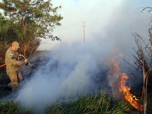 Com 268 focos no fim de semana, Paraná acende alerta para incêndios florestais