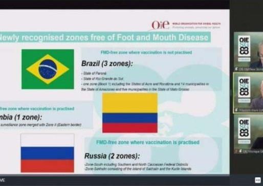 Paraná conquista status internacional de área livre de febre aftosa sem vacinação