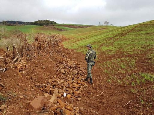 Estado aplica R$ 1 milhão em multas e apreende madeira nativa em ação contra o desmatamento