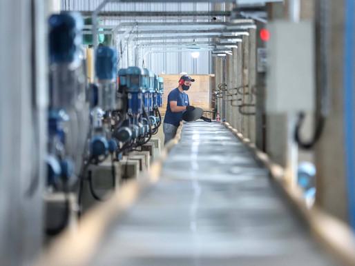 Com avanço de 3,3%, indústria do Paraná tem o terceiro maior crescimento do País em julho