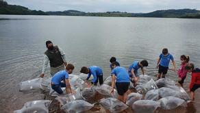 Rio Iguaçu recebe mais de 300 mil peixes de espécies nativas