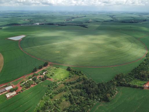 Paraná deve produzir 38,6 milhões de toneladas de grãos na safra 2020/21