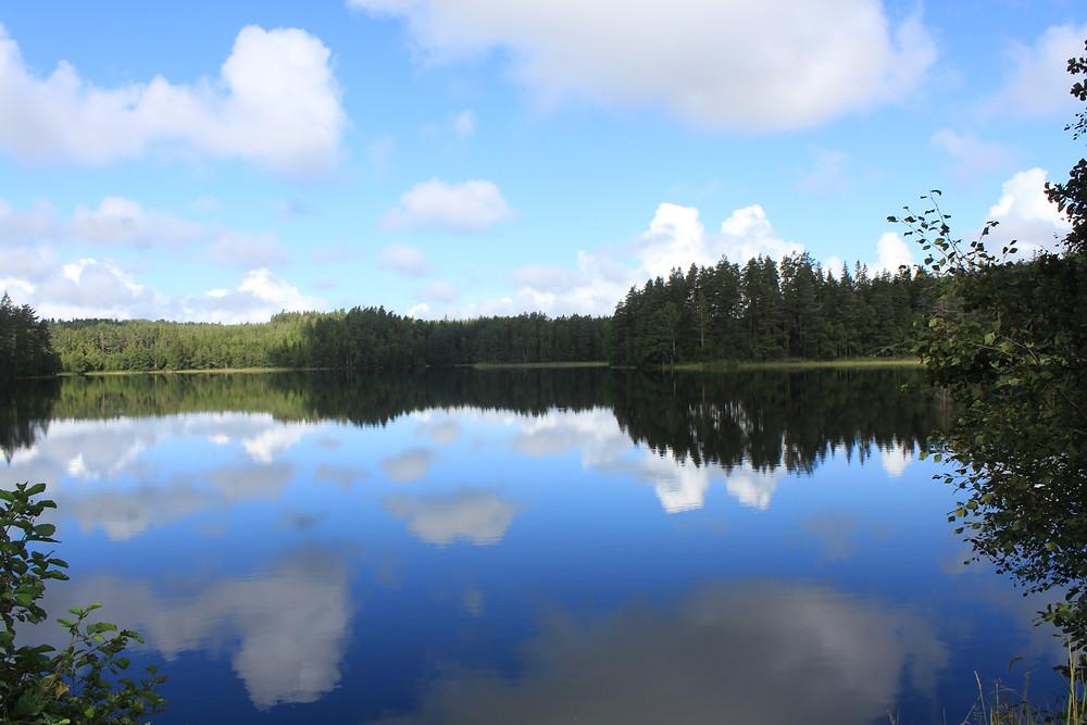 Wald und See spiegeln sich im Wasser
