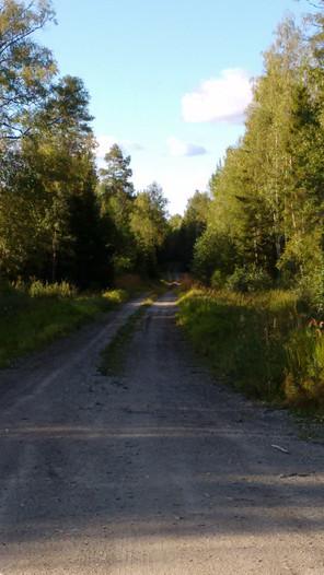 Auf Wiedersehen Schweden