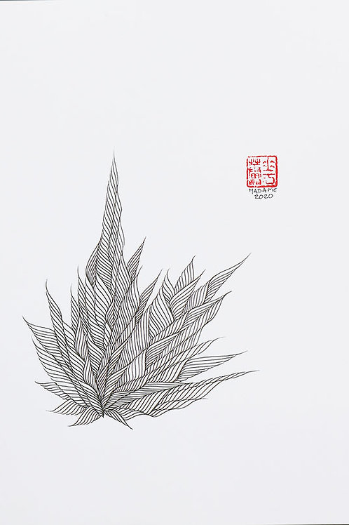 Organic Calligraphy 1