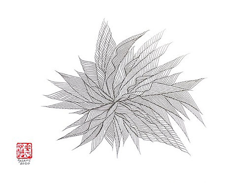 Organic Calligraphy 22