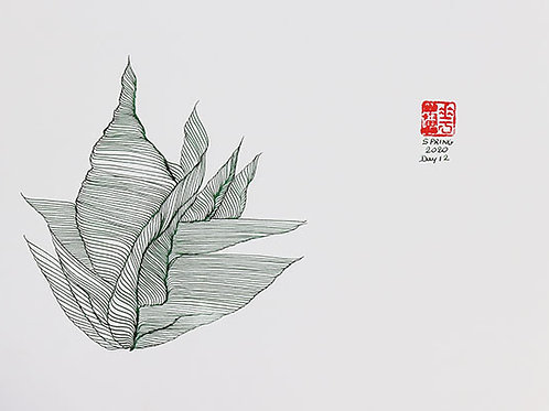 Organic Calligraphy 17