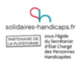 Logo-solidaires-handicaps-partenaires-Mention-Grand-72DPI_edited.jpg