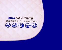 BINA 3_edited