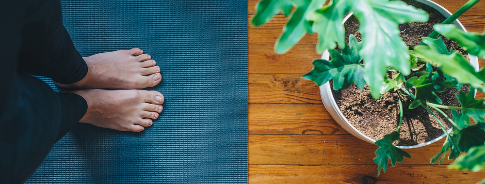 Lady practicing yoga and gratitude standing feet together on a blue yoga mat on a hard wooden living room floor with a plant next to her