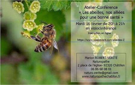 Capture-conf-abeilles.JPG