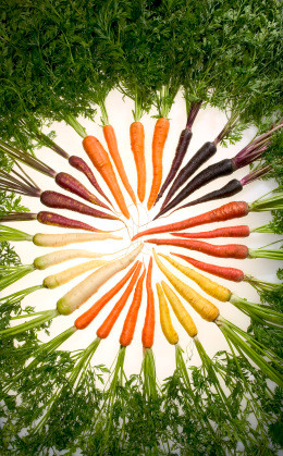 Carrots: Adding More to Your Life Than Just Color