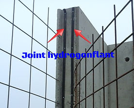 Joint hydrogonflant