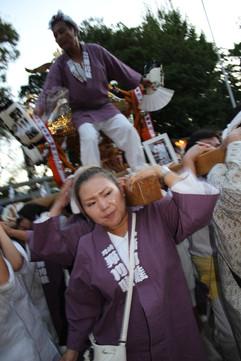 野川神明社 (79).jpg