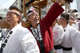横須賀神輿パレード (25).jpg