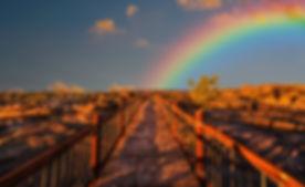 Entrepreneur-Ann-rainbow.jpg