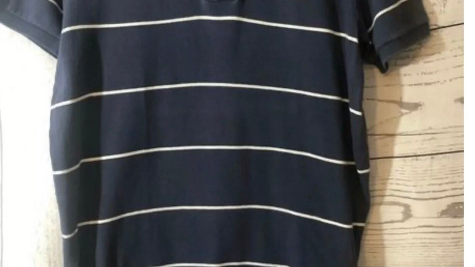 Men's Hollister & Co Navy Stripe Polo T-Shirt Size Small Good Condition