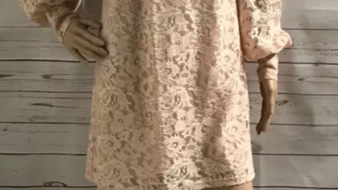Women's / Ladies Warehouse Light Pink Lace Long Sleeved Dress (lined) Size 12