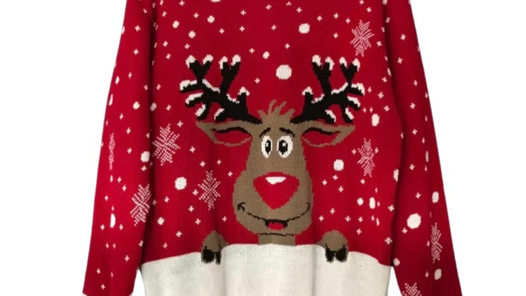 Women's / ladies Xmas Christmas rudolf jumper size M new with tags