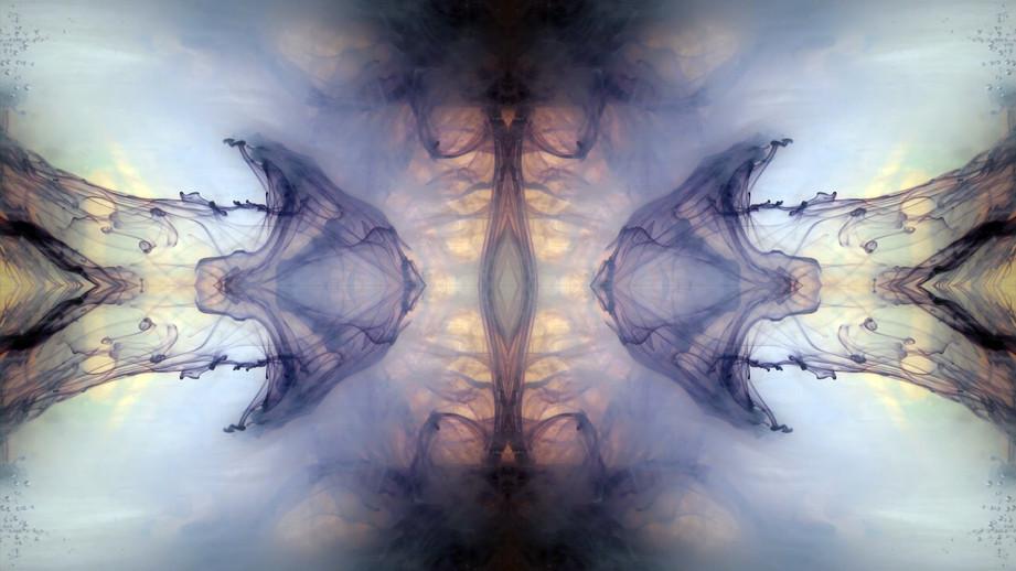 Black moth dreams IV