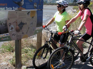 Bicycle Hire and Storage