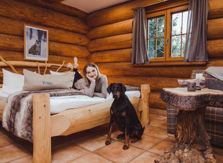 Mit Hund Harz erleben