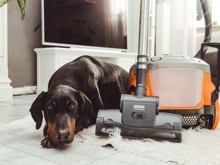 THOMAS AQUA+ Pet & Family Parquet Pro