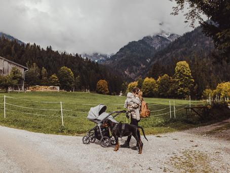 Familienurlaub mit Hund im Stadlhof in Maria Alm, Region Hochkönig