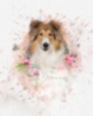 PENNER-Digital-Artwork-Grace-ohne Websei