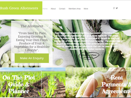 Welcome to our new updated website!