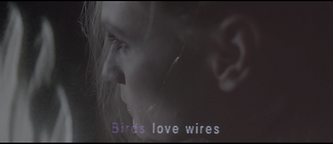 Juliette Van Dormael, DOP, Director of photography, videoclip, Birds Loves Wires