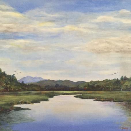 Danbury Bog