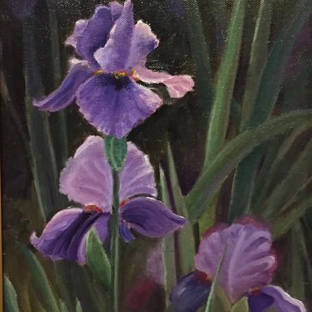 Michelles' Irises