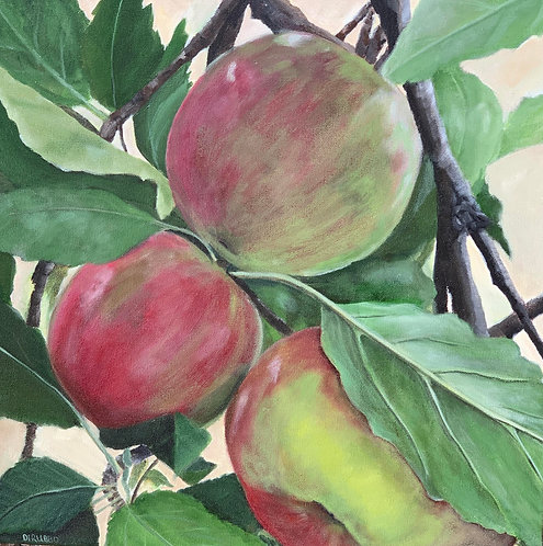Apples on the Tree  Acrylic 18 x 18 x 2