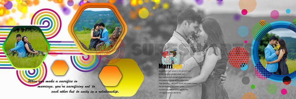 Suresh Arts (New DM) (3).jpg