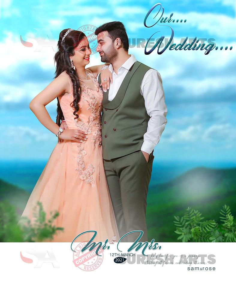 wedding Portfolio -SureshArts (2).jpg